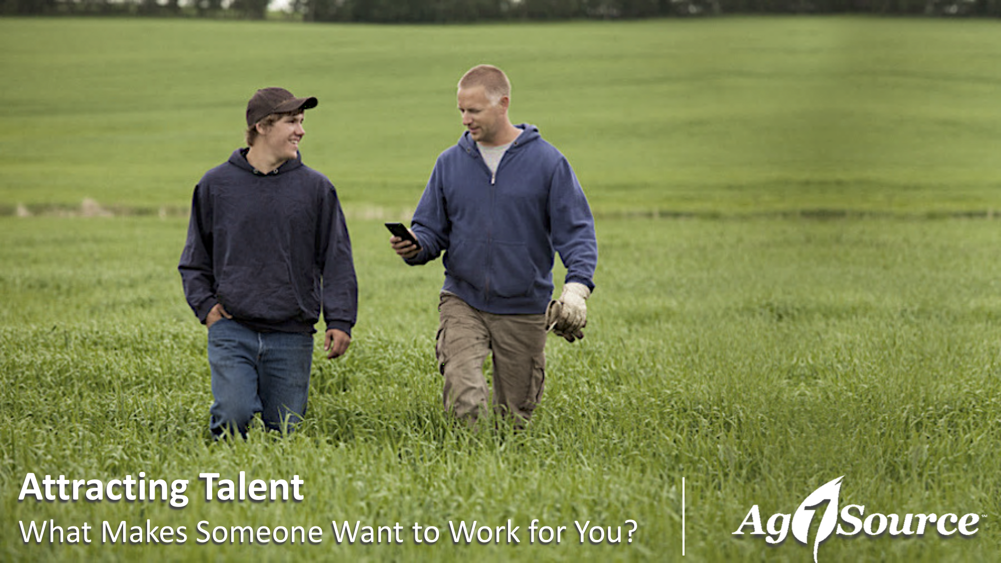 Agriculture manager walking with young employee in an open field.