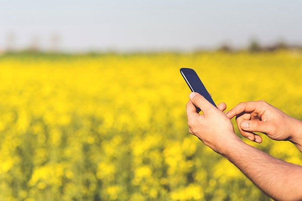 Your customers prefer to text? AgriSync is here to help.